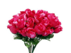 Silk Rose Buds - Fuchsia 1-bunch