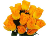 Silk Rose Buds - Orange/Yellow 1-bunch