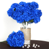 14 Chrysanthemum Mum Balls - Royal Blue