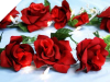 Supersized Rose Garland-Red