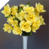 Velvet Bloom Roses - Yellow 1-bunch