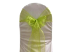 Sage Green Chair Sash