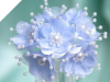 Faux Pearl Flower-Baby Blue.72/pk