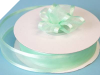 2.22cm Satin Edge Organza-Mint