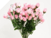 Mini Rose Buds - Pink 1-bunch