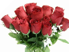 Silk Rose Buds - Burgundy 1-bunch