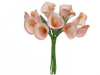 Calla Lily-Pink, singles x 12