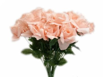 Silk Open Rose - Peach 1-bunch