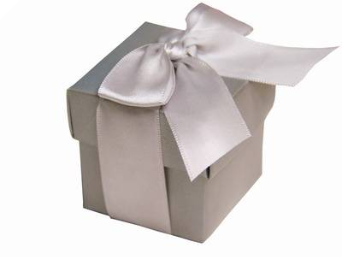 Silver Favour Boxes 2pc - 25 Pack (Metallic look)