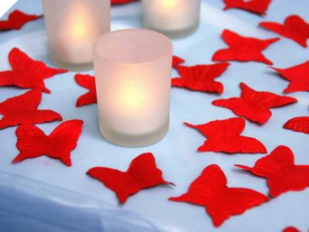 500 Butterfly Petals - Red