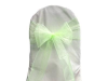 Apple Green Chair Sash