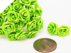 Ribbon Roses-Apple Green.144/pk