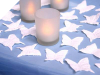 500 Butterfly Petals - White
