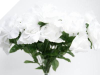 Silk Open Rose - White 1-bunch