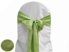 Apple Green Taffeta Crinkle Chair Sash